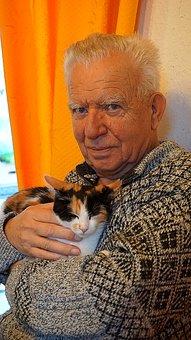 cat-1941219__340.jpg